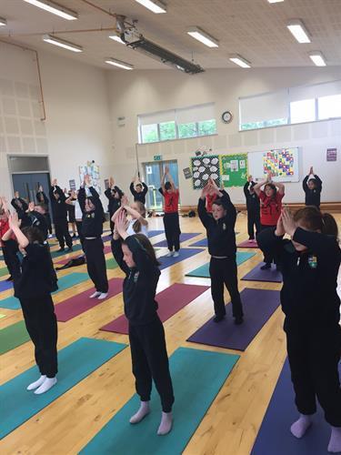 Yôga Yoga 2.JPG
