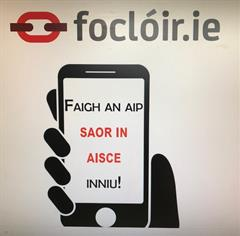 Aip Nua Foclóir.ie